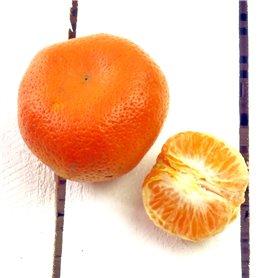 Mandarina ecológica kg.