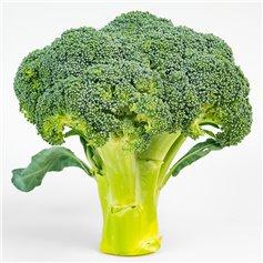 Brocoli ecológico kg.