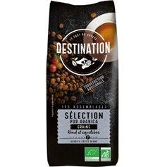 Café Grano Arábica 100% Bio 1 kg. Destination