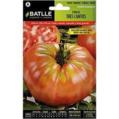 Semillas Tomate Tres Cantos Bio Siembra 1 gr.