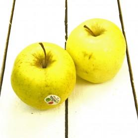 Manzana golden ecológica kg.